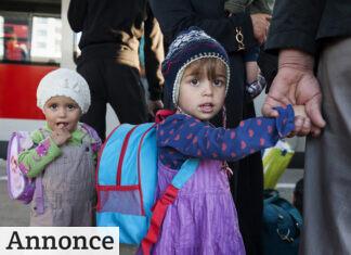 flygtninge giver pres på skolerne